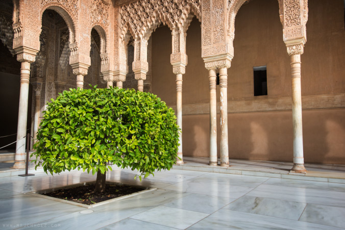 Court of the Lions; Alhambra, Granada, Spain